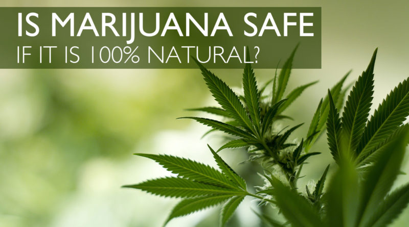 Is Marijuana Safe As Characterized Over The Past?